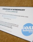 Vydra goal v Brighton football print authenticity certificate - goalhangers.co.uk